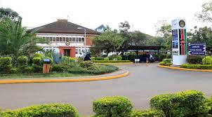 School of Knowledge Sciences initiated